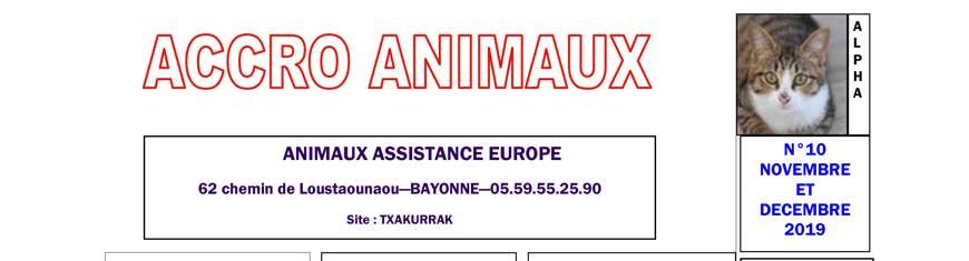 Accro Animaux de novembre & décembre 2019 est sorti !