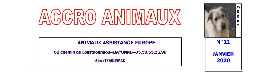 Accro Animaux du mois de janvier 2020 est sorti !