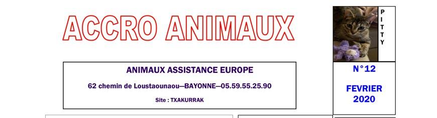Accro Animaux du mois de février 2020 est sorti !