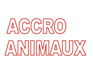 Accro Animaux de juillet 2019 est sorti !